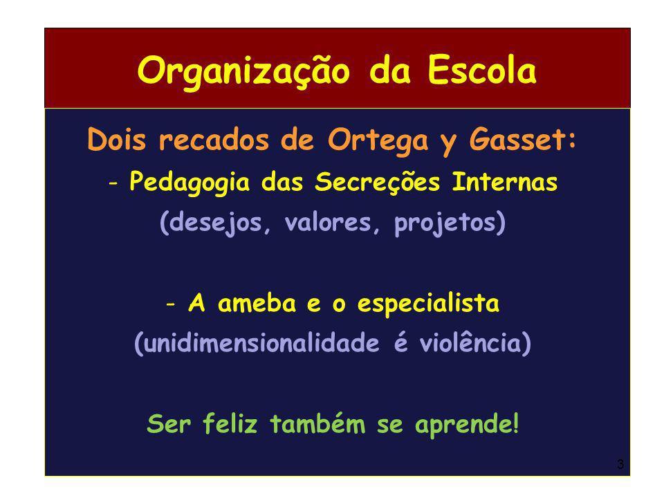 Organização da Escola Dois recados de Ortega y Gasset: - Pedagogia das Secreções Internas (desejos, valores, projetos) - A ameba e o especialista (uni