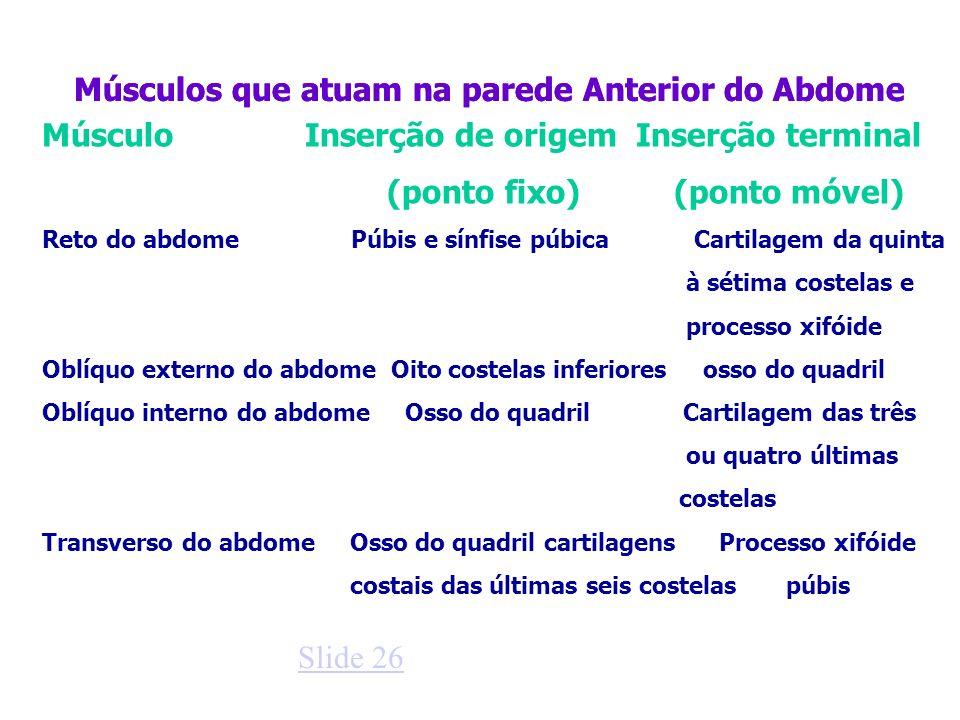 Músculos que atuam na parede Anterior do Abdome Músculo Inserção de origem Inserção terminal (ponto fixo) (ponto móvel) Reto do abdome Púbis e sínfise