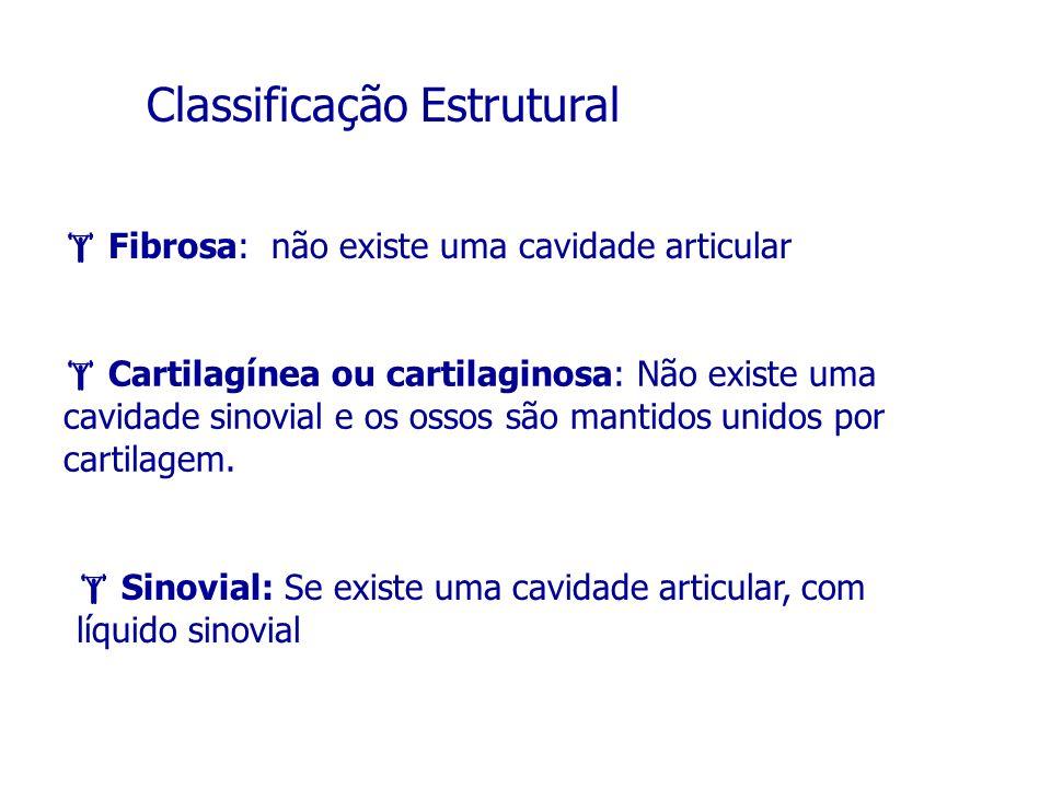 Classificação Estrutural Fibrosa: não existe uma cavidade articular Cartilagínea ou cartilaginosa: Não existe uma cavidade sinovial e os ossos são man