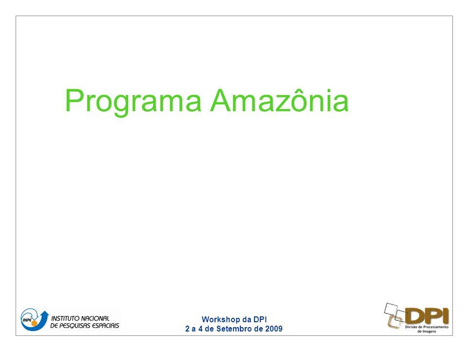 Workshop da DPI 2 a 4 de Setembro de 2009 Programa Amazônia