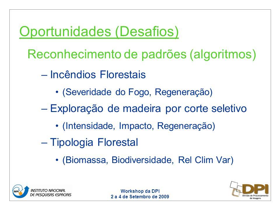 Workshop da DPI 2 a 4 de Setembro de 2009 Reconhecimento de padrões (algoritmos) –Incêndios Florestais (Severidade do Fogo, Regeneração) –Exploração de madeira por corte seletivo (Intensidade, Impacto, Regeneração) –Tipologia Florestal (Biomassa, Biodiversidade, Rel Clim Var) Oportunidades (Desafios)