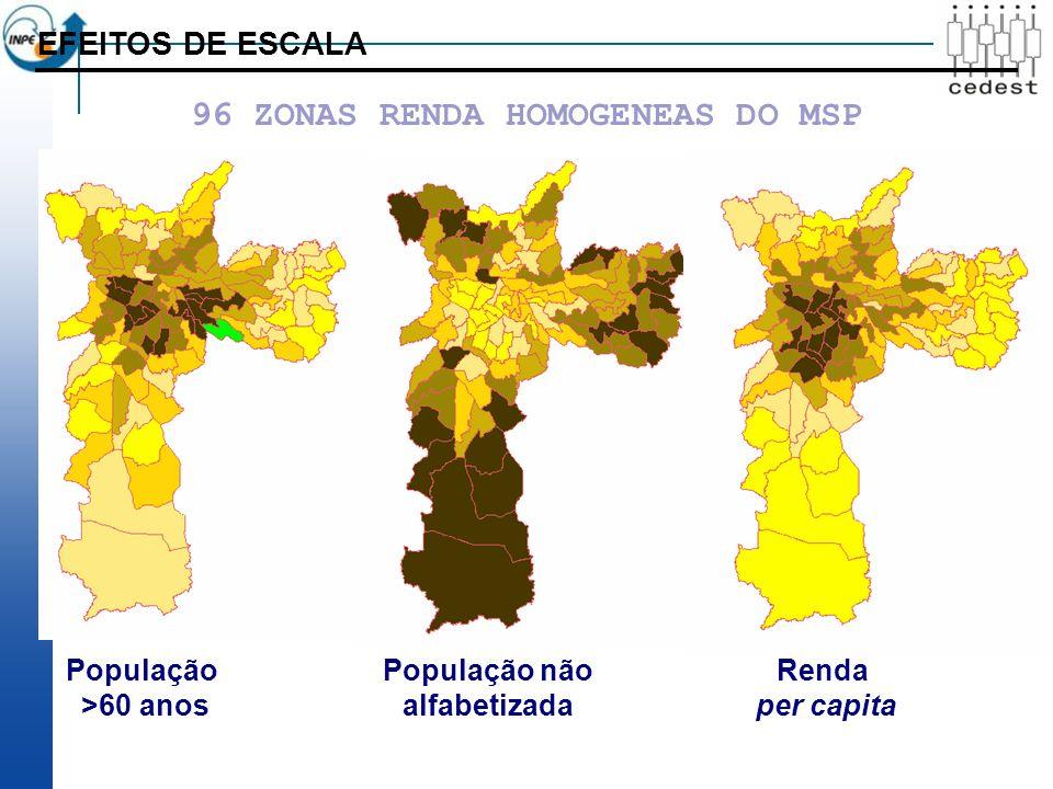 População >60 anos População não alfabetizada Renda per capita EFEITOS DE ESCALA 96 ZONAS RENDA HOMOGENEAS DO MSP