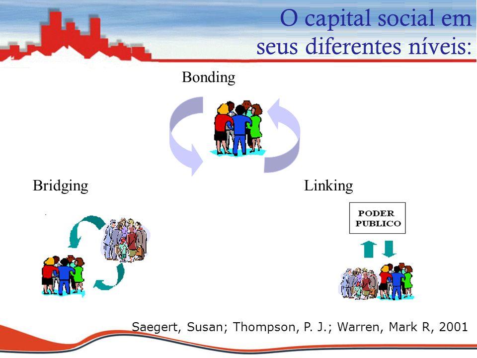 O capital social em seus diferentes níveis: Bonding Bridging Linking Saegert, Susan; Thompson, P. J.; Warren, Mark R, 2001