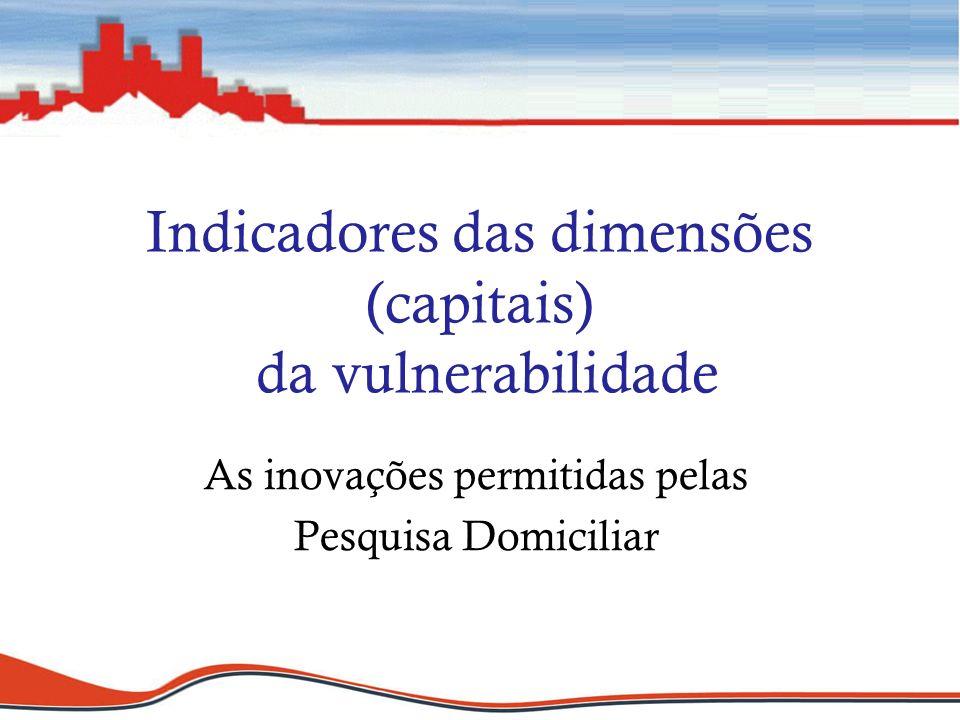 Indicadores das dimensões (capitais) da vulnerabilidade As inovações permitidas pelas Pesquisa Domiciliar
