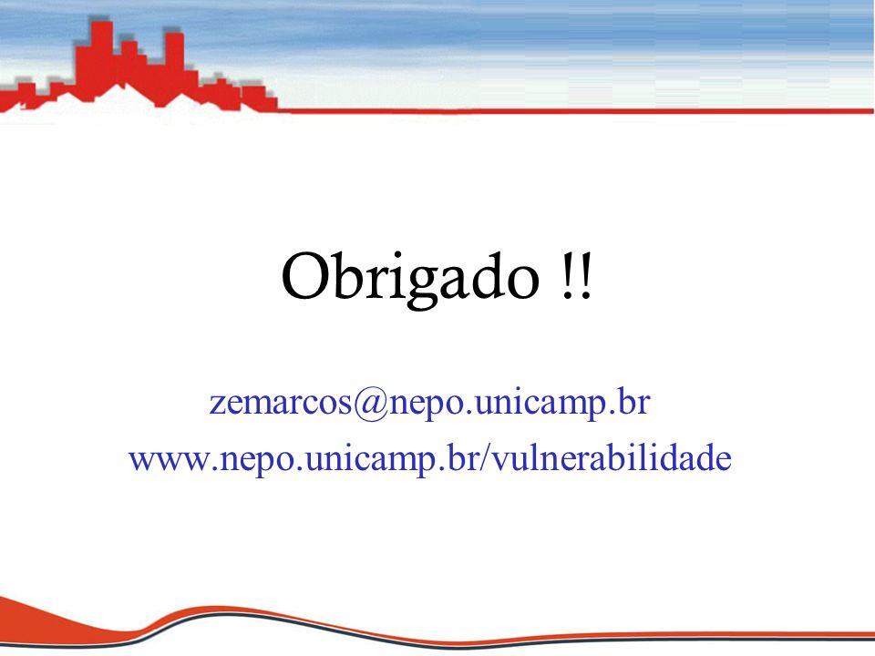 Obrigado !! zemarcos@nepo.unicamp.br www.nepo.unicamp.br/vulnerabilidade