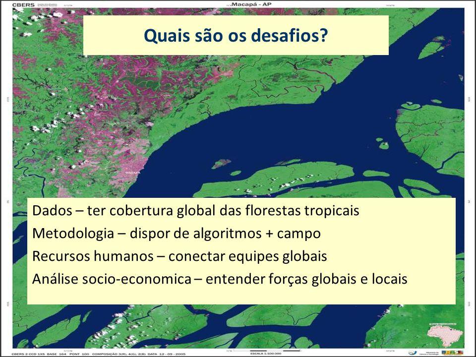 Quais são os desafios? Dados – ter cobertura global das florestas tropicais Metodologia – dispor de algoritmos + campo Recursos humanos – conectar equ