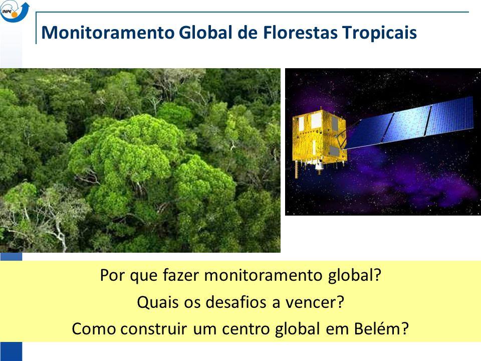 Monitoramento Global de Florestas Tropicais Por que fazer monitoramento global? Quais os desafios a vencer? Como construir um centro global em Belém?