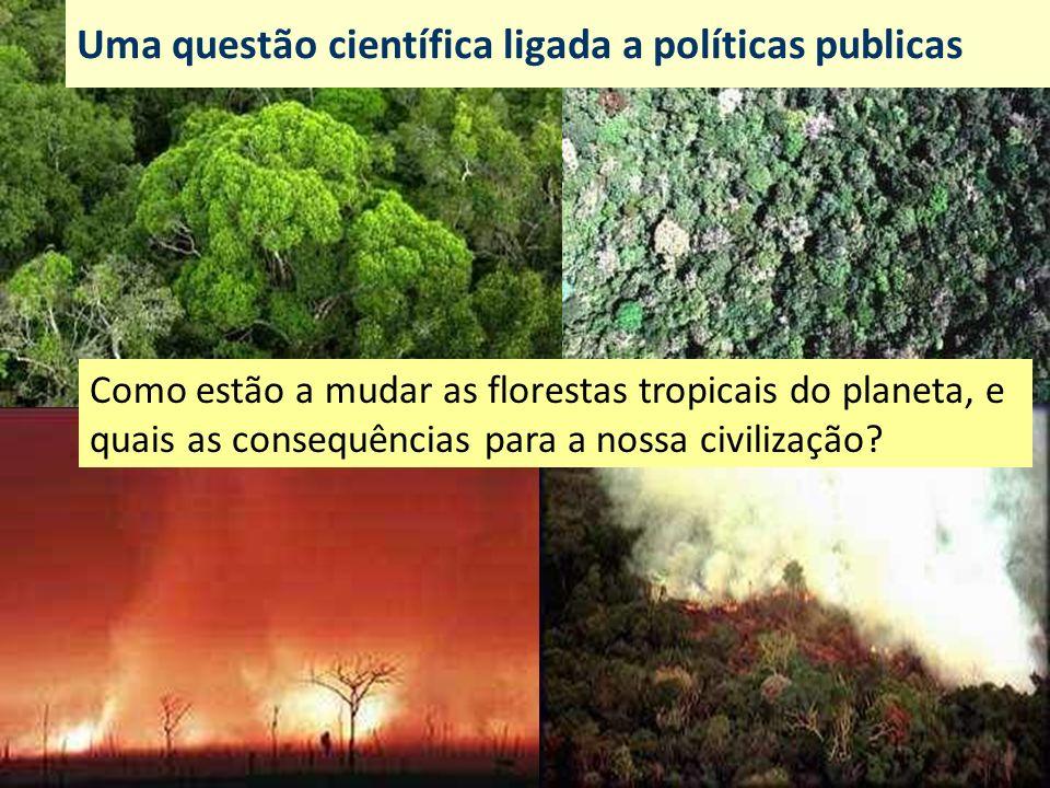 Uma questão científica ligada a políticas publicas Como estão a mudar as florestas tropicais do planeta, e quais as consequências para a nossa civiliz