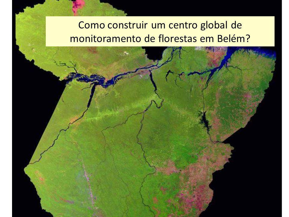 Como construir um centro global de monitoramento de florestas em Belém?