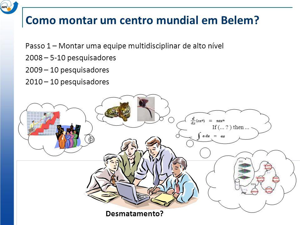 Como montar um centro mundial em Belem? Passo 1 – Montar uma equipe multidisciplinar de alto nível 2008 – 5-10 pesquisadores 2009 – 10 pesquisadores 2