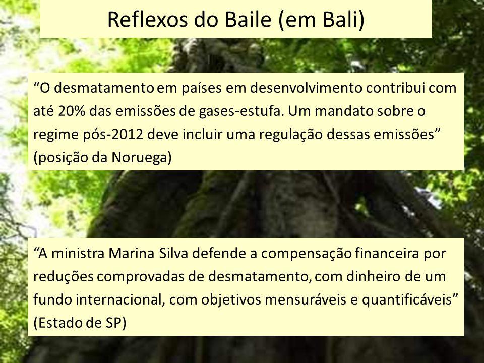 Reflexos do Baile (em Bali) O desmatamento em países em desenvolvimento contribui com até 20% das emissões de gases-estufa. Um mandato sobre o regime