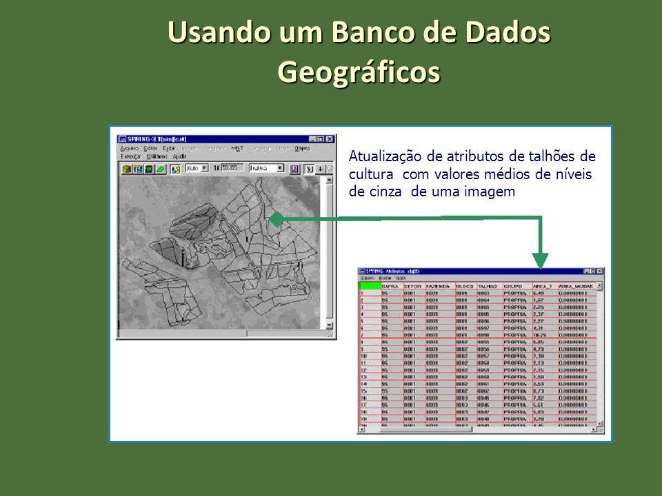 Atualização de atributos de talhões de cultura com valores médios de níveis de cinza de uma imagem Usando um Banco de Dados Geográficos