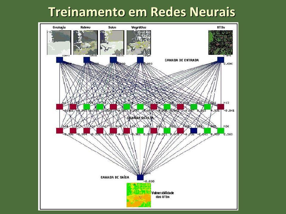 Treinamento em Redes Neurais
