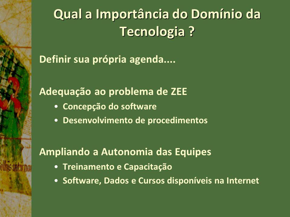 Qual a Importância do Domínio da Tecnologia ? Definir sua própria agenda.... Adequação ao problema de ZEE Concepção do software Desenvolvimento de pro