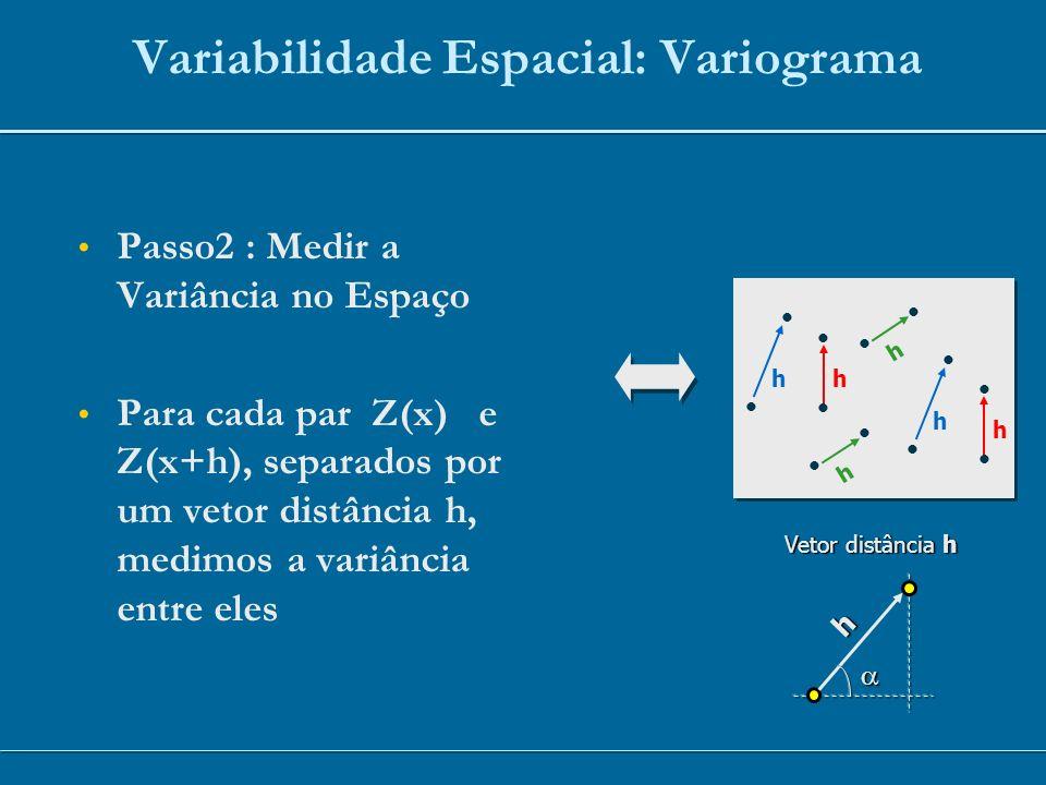 h h h h h h h Vetor distância h Variabilidade Espacial: Variograma Passo2 : Medir a Variância no Espaço Para cada par Z(x) e Z(x+h), separados por um