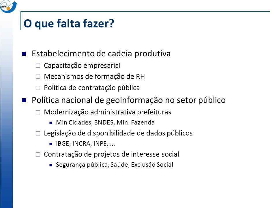 O que falta fazer? Estabelecimento de cadeia produtiva Capacitação empresarial Mecanismos de formação de RH Política de contratação pública Política n