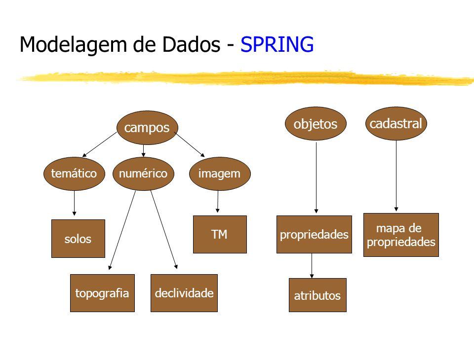 Modelagem de Dados - SPRING campos temáticonuméricoimagem objetos solos topografiadeclividade TMpropriedades mapa de propriedades cadastral atributos