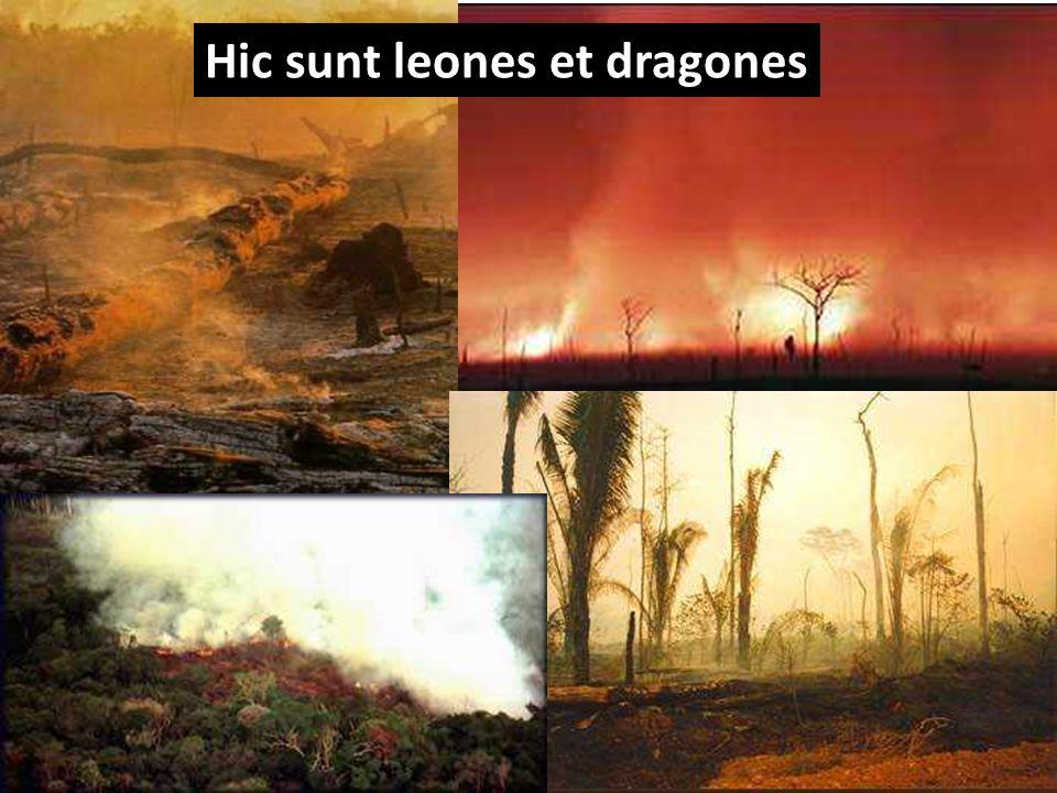 fonte: Carlos Nobre Hic sunt leones et dragones