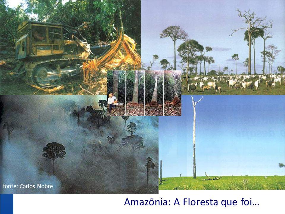 Amazônia: A Floresta que foi… fonte: Carlos Nobre