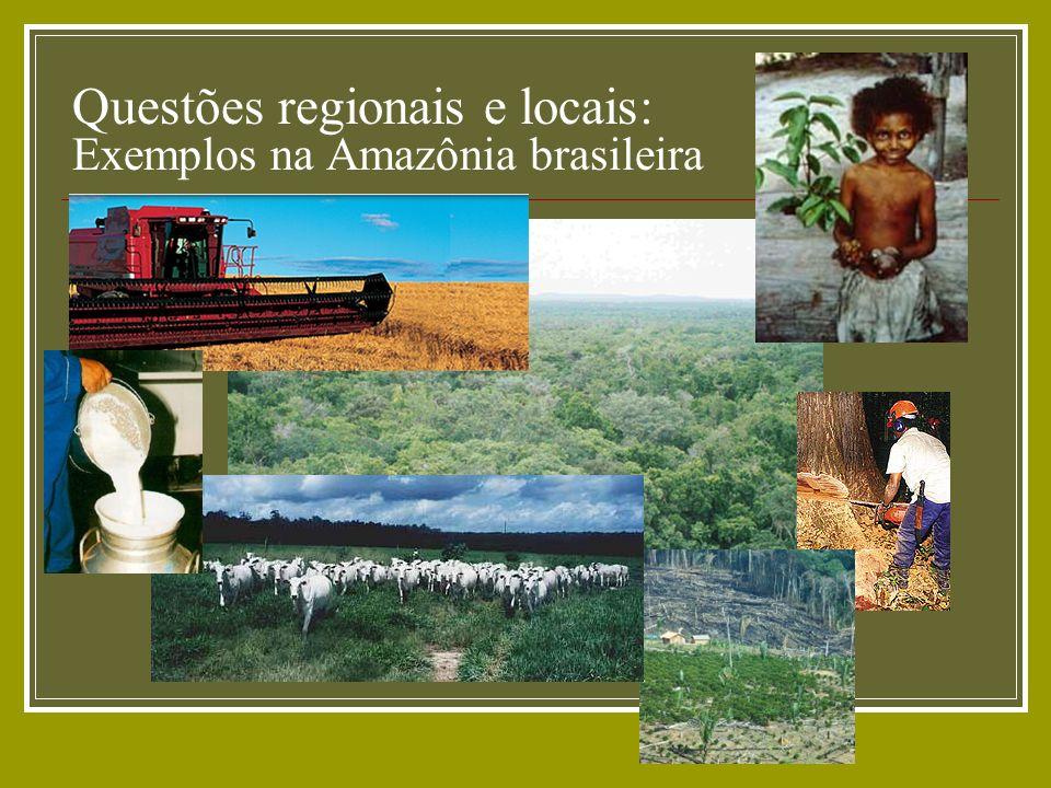 Questões regionais e locais: Exemplos na Amazônia brasileira