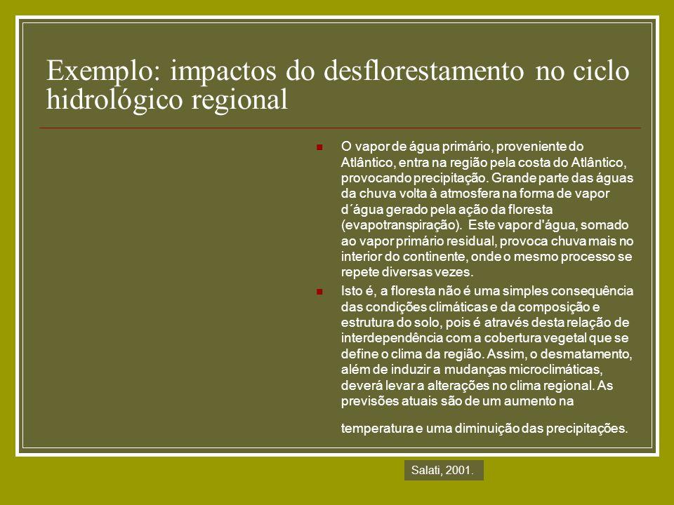 Exemplo: impactos do desflorestamento no ciclo hidrológico regional O vapor de água primário, proveniente do Atlântico, entra na região pela costa do