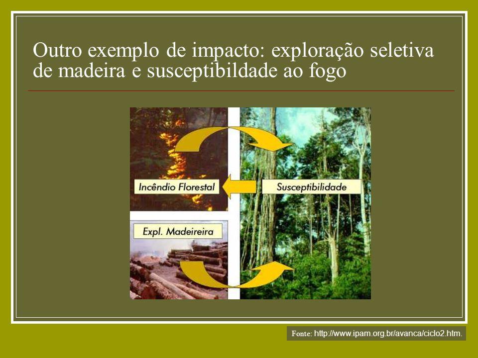 Outro exemplo de impacto: exploração seletiva de madeira e susceptibildade ao fogo Fonte: http://www.ipam.org.br/avanca/ciclo2.htm.