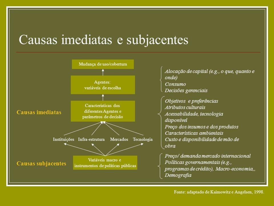 Causas imediatas e subjacentes Mudança de uso/cobertura Agentes: variáveis de escolha Características dos diferentes Agentes e parâmetros de decisão O