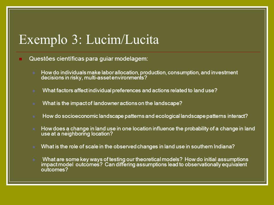 Exemplo 3: Lucim/Lucita Questôes científicas para guiar modelagem: How do individuals make labor allocation, production, consumption, and investment d