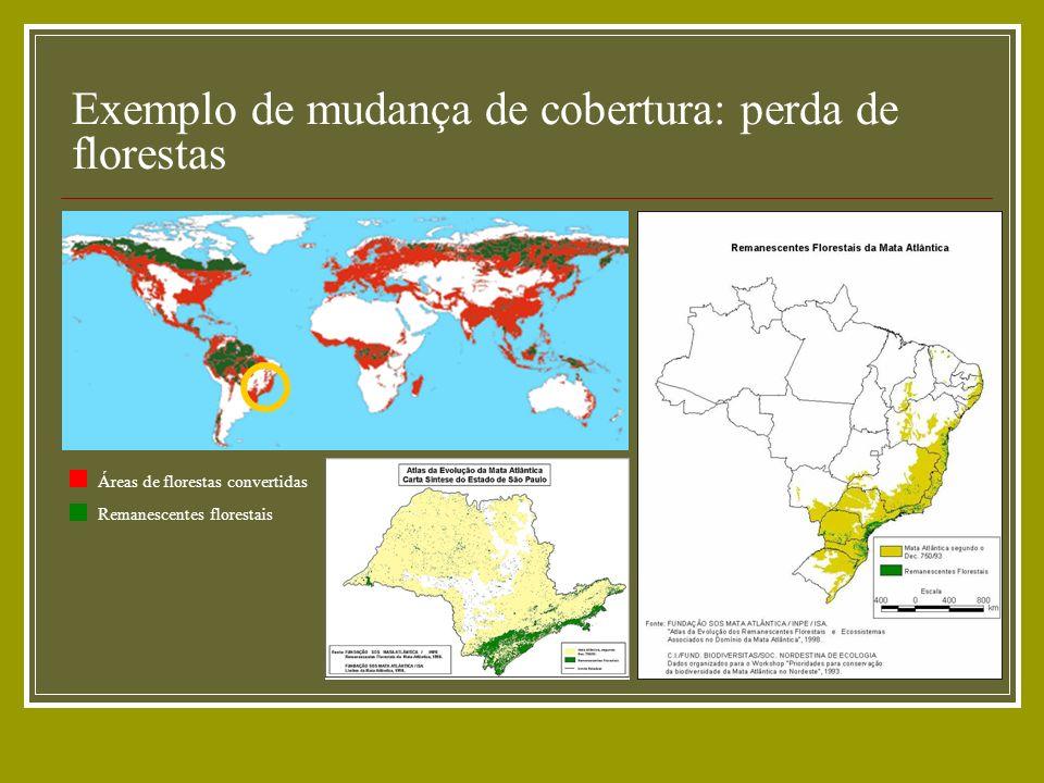 Exemplo de mudança de cobertura: perda de florestas Áreas de florestas convertidas Remanescentes florestais