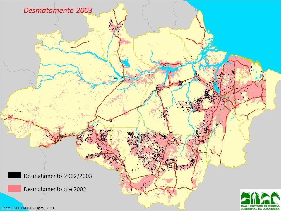 Desmatamento 2003 Fonte: INPE PRODES Digital, 2004. Desmatamento 2002/2003 Desmatamento até 2002