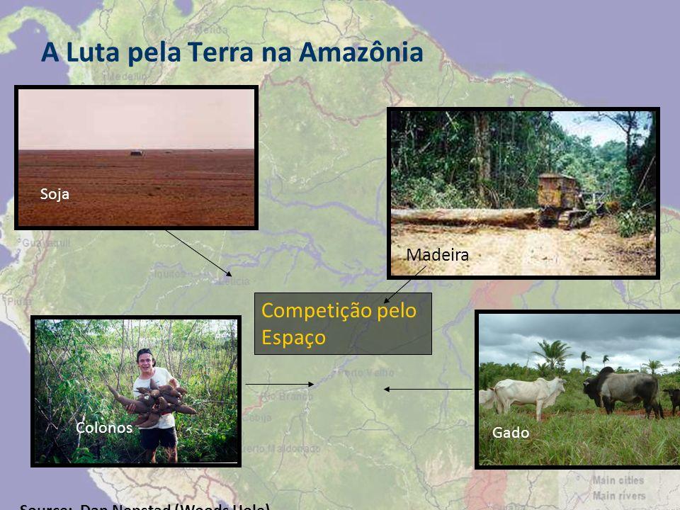 A Luta pela Terra na Amazônia Madeira Competição pelo Espaço Soja Colonos Gado Source: Dan Nepstad (Woods Hole)