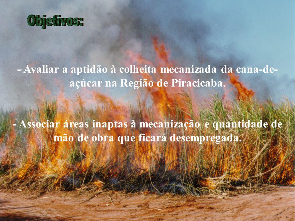 - Avaliar a aptidão à colheita mecanizada da cana-de- açúcar na Região de Piracicaba.