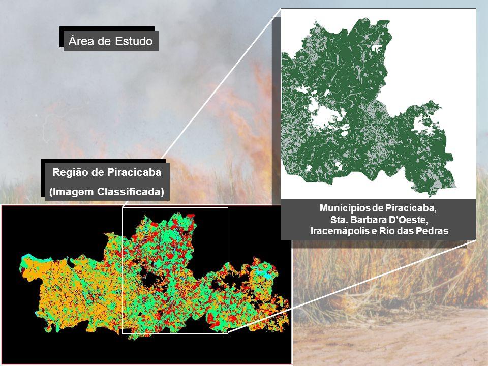 Área de Estudo Municípios de Piracicaba, Sta. Barbara DOeste, Iracemápolis e Rio das Pedras Região de Piracicaba (Imagem Classificada) Região de Pirac