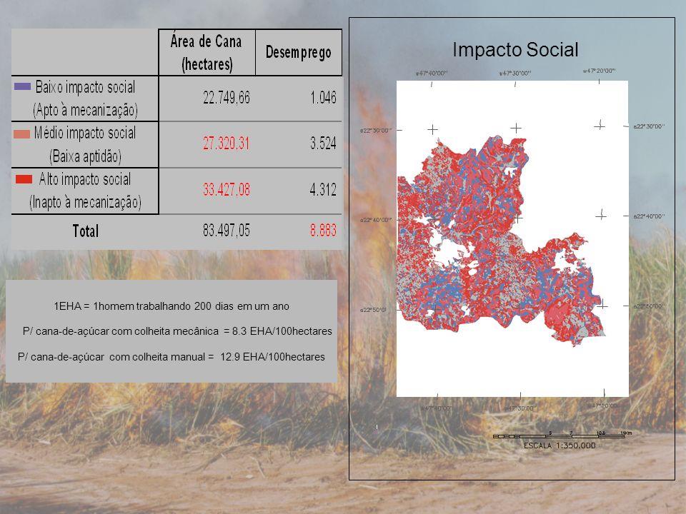 1EHA = 1homem trabalhando 200 dias em um ano P/ cana-de-açúcar com colheita mecânica = 8.3 EHA/100hectares P/ cana-de-açúcar com colheita manual = 12.9 EHA/100hectares Impacto Social