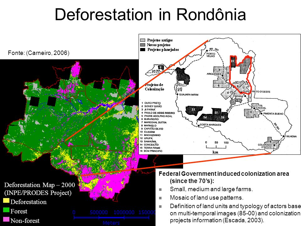 Deforestation Forest Non-forest Deforestation Map – 2000 (INPE/PRODES Project) Federal Government induced colonization area (since the 70s): Small, medium and large farms.