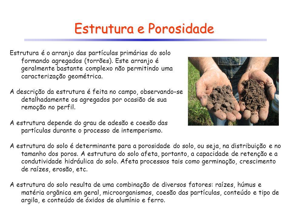 Estrutura e Porosidade Estrutura é o arranjo das partículas primárias do solo formando agregados (torrões). Este arranjo é geralmente bastante complex