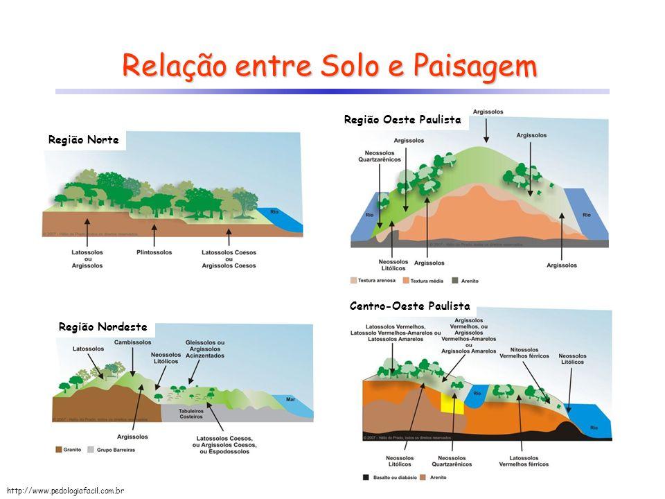 Relação entre Solo e Paisagem Região Oeste Paulista Centro-Oeste Paulista Região Norte Região Nordeste http://www.pedologiafacil.com.br