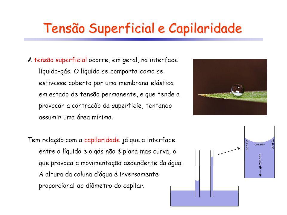 Tensão Superficial e Capilaridade A tensão superficial ocorre, em geral, na interface líquido-gás. O líquido se comporta como se estivesse coberto por