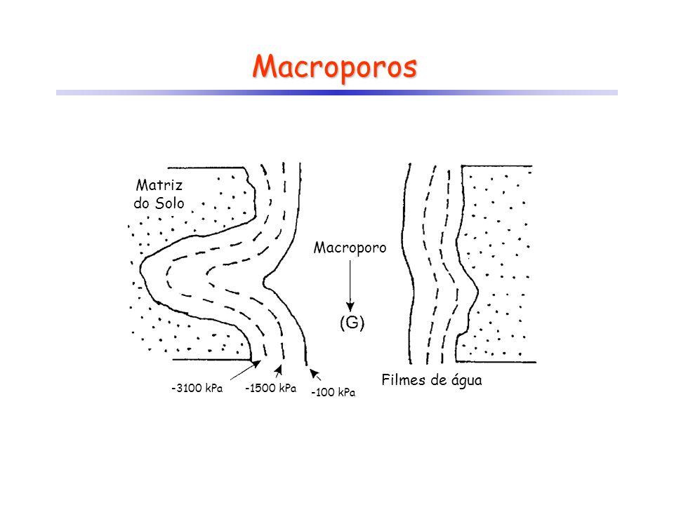 Macroporos Matriz do Solo Macroporo Filmes de água -3100 kPa-1500 kPa -100 kPa
