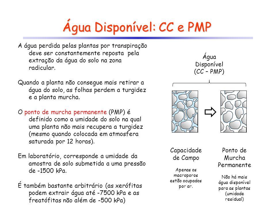Capacidade de Campo Apenas os macroporos estão ocupados por ar. Água Disponível: CC e PMP A água perdida pelas plantas por transpiração deve ser const