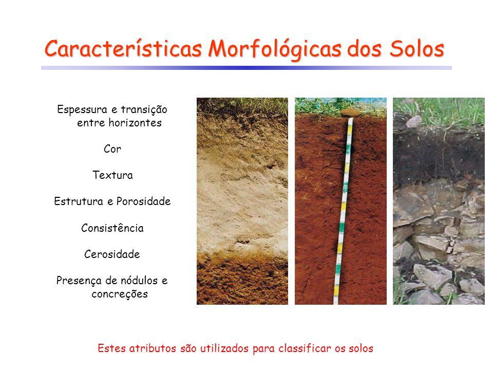 Cor http://www.labogef.iesa.ufg.br/labogef/arquivos/downloads/Morfologia_SPA_I_2006_71177.pdf Cores escuras: indicam presença de matéria orgânica e estão relacionadas com os horizontes mais superficiais.