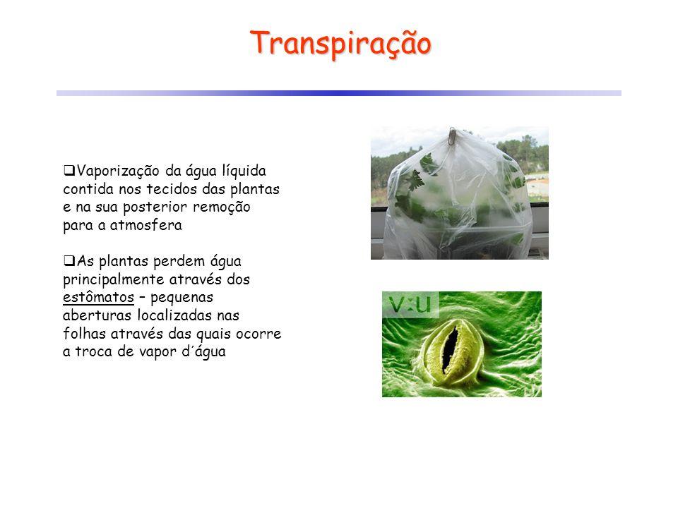 Transpiração Vaporização da água líquida contida nos tecidos das plantas e na sua posterior remoção para a atmosfera As plantas perdem água principalm