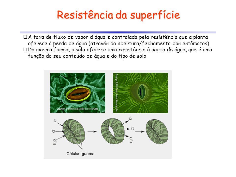Resistência da superfície A taxa de fluxo de vapor d´água é controlada pela resistência que a planta oferece à perda de água (através da abertura/fech