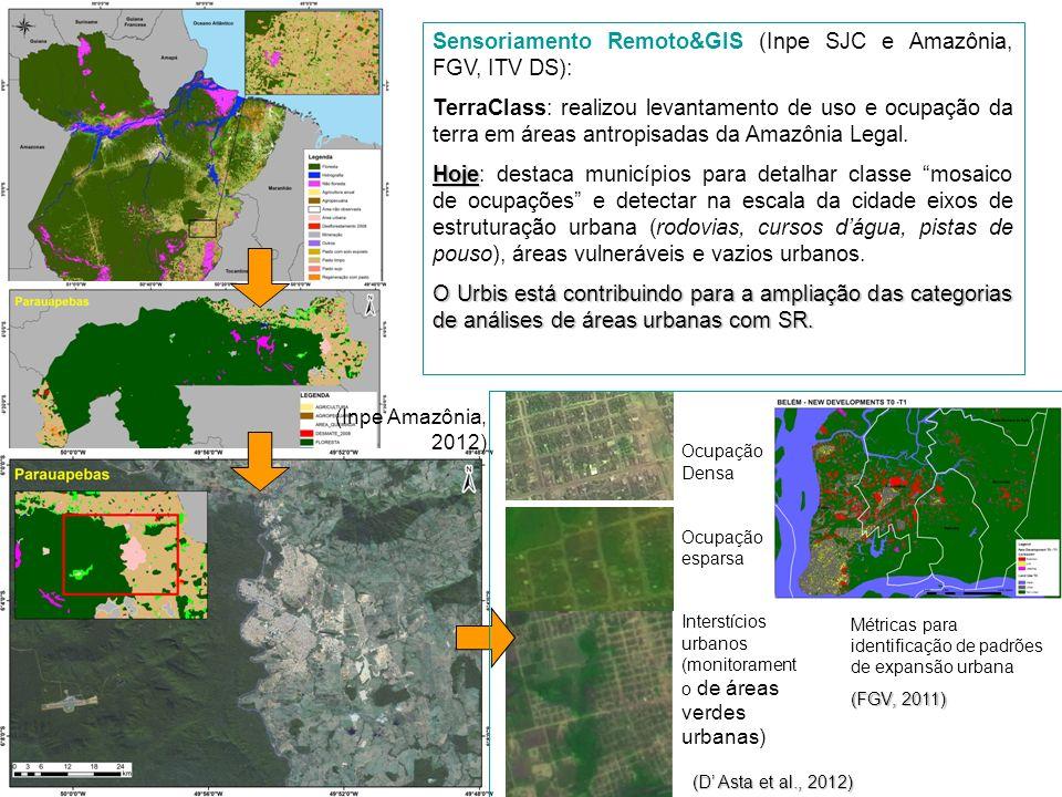 Sensoriamento Remoto&GIS (Inpe SJC e Amazônia, FGV, ITV DS): TerraClass: realizou levantamento de uso e ocupação da terra em áreas antropisadas da Ama