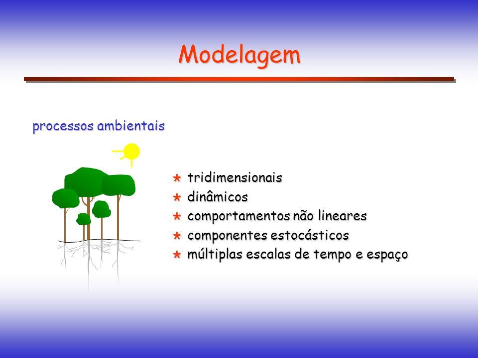 tridimensionais tridimensionais dinâmicos dinâmicos comportamentos não lineares comportamentos não lineares componentes estocásticos componentes estoc