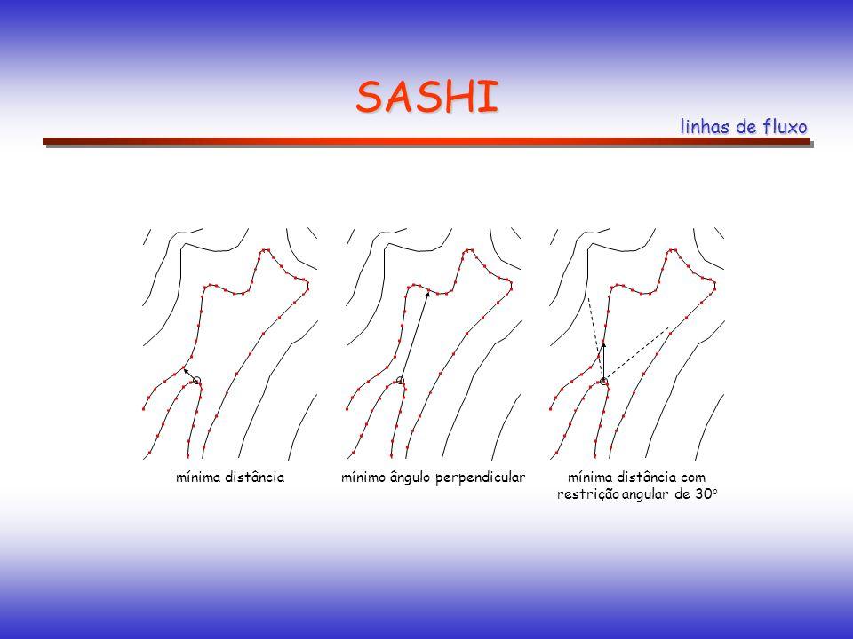 SASHI linhas de fluxo mínima distânciamínimo ângulo perpendicularmínima distância com restrição angular de 30 o