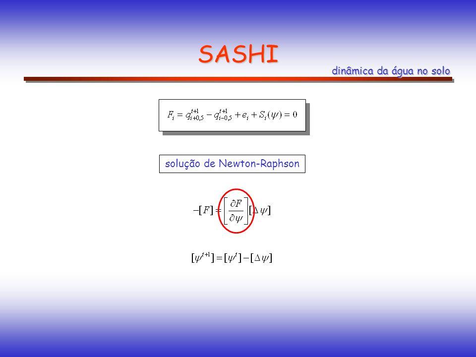SASHI dinâmica da água no solo solução de Newton-Raphson