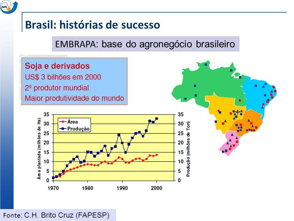 Brasil: histórias de sucesso EMBRAPA : base do agronegócio brasileiro Fonte : C.H. Brito Cruz (FAPESP)