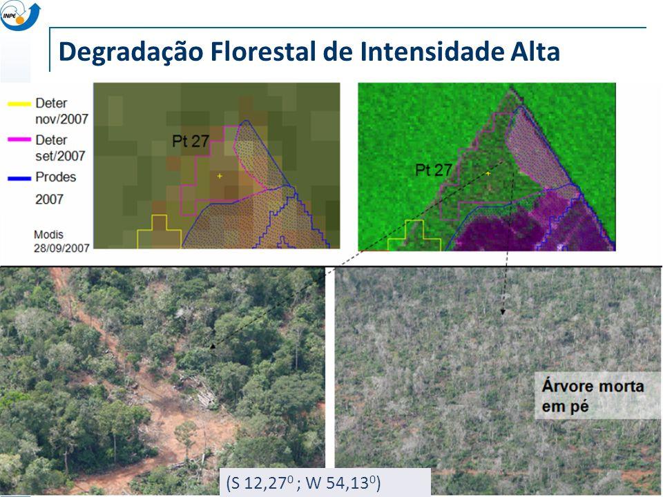Degradação Florestal de Intensidade Alta (S 12,27 0 ; W 54,13 0 )