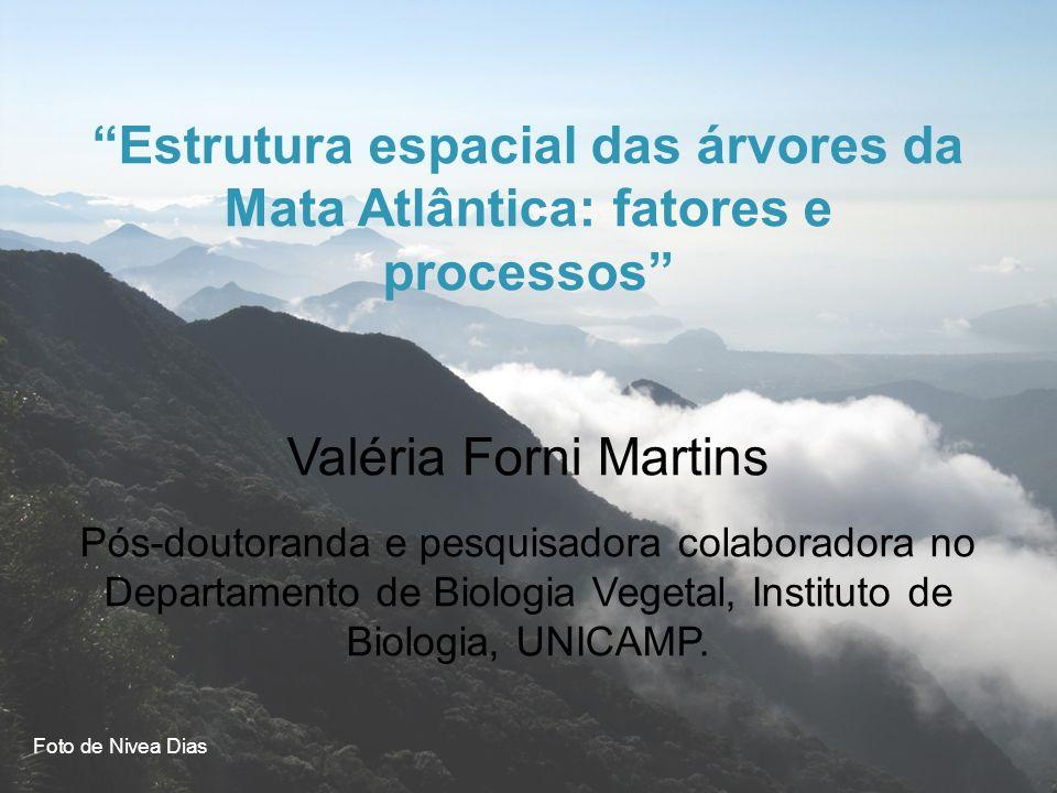 Estrutura espacial das árvores da Mata Atlântica: fatores e processos Valéria Forni Martins Pós-doutoranda e pesquisadora colaboradora no Departamento